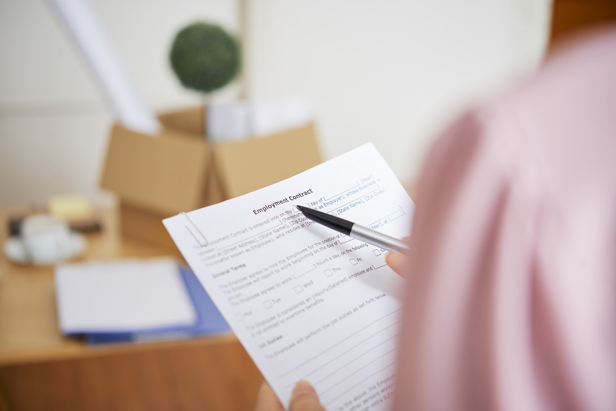 Businesswoman reading employment contract